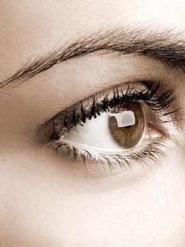 Elevação de sobrancelhas: saiba qual a melhor técnica para você